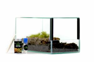 Insektenliebe Assel-Terrarium