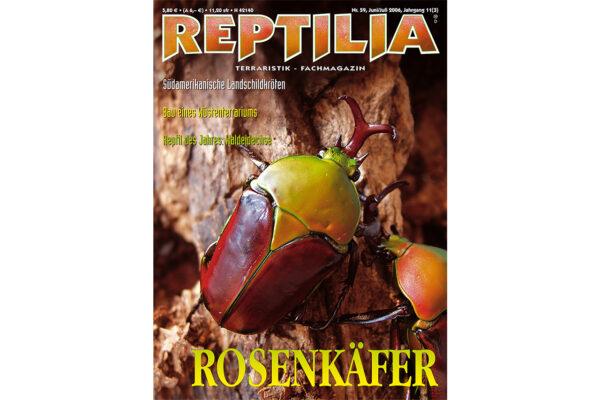 REPTILIA 59 Rosenkäfer