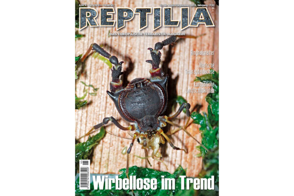 REPTILIA 96 Wirbellose im Trend
