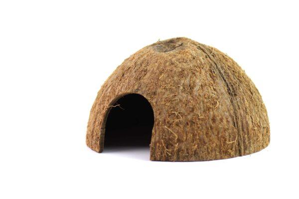 Kokosnuss Halbschalen