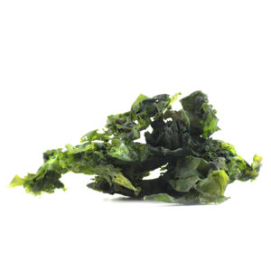 Green algae sea salad
