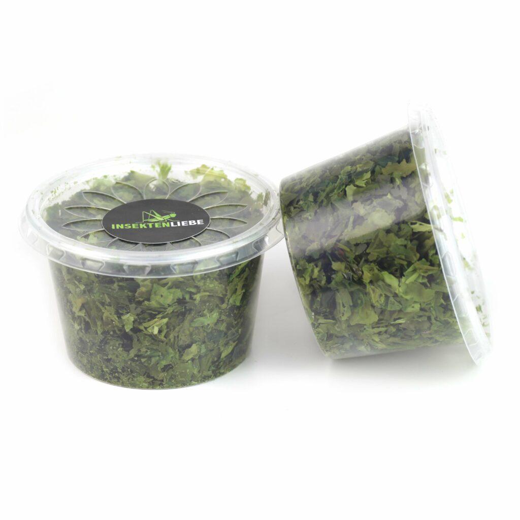 Grünalge Meersalat