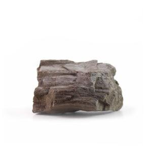 Xylolite