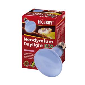 Hobby Neodymium Daylight Eco