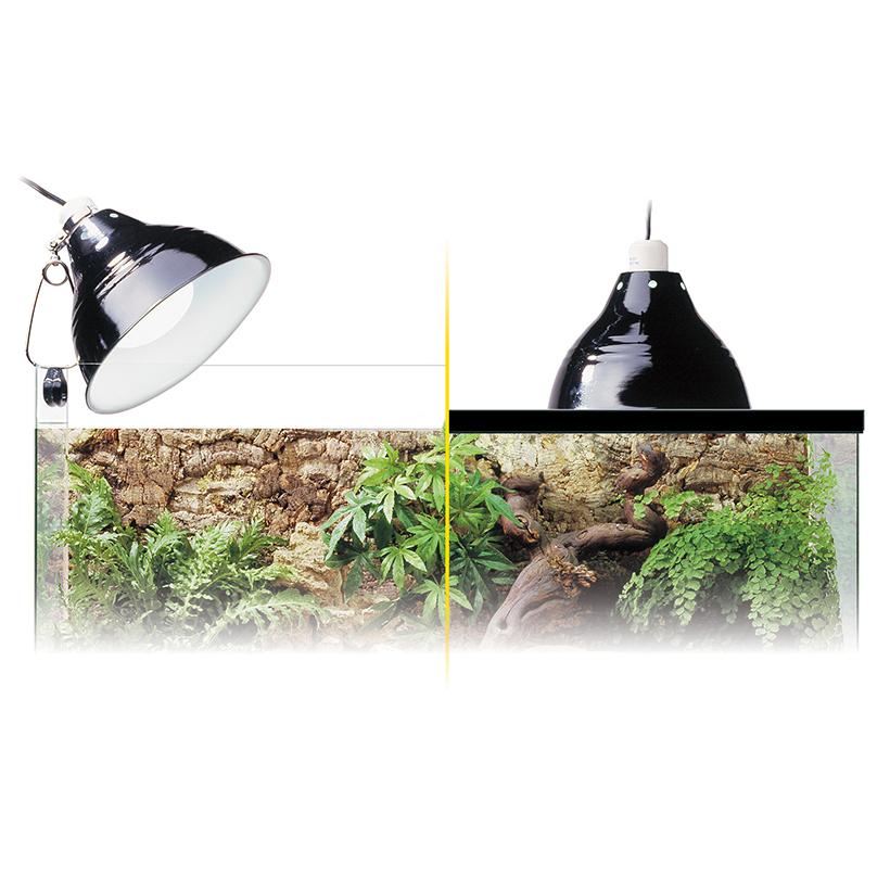 Exo Terra Glow Light Porzellan-Klemmlampe mit Nachtbeleuchtung Anwendung